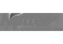 nutter-logo